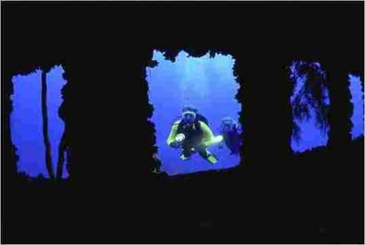 Diving__529_355